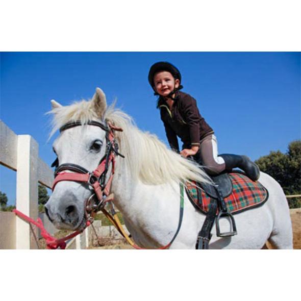 Ponyreiten für Kindergeburtstage