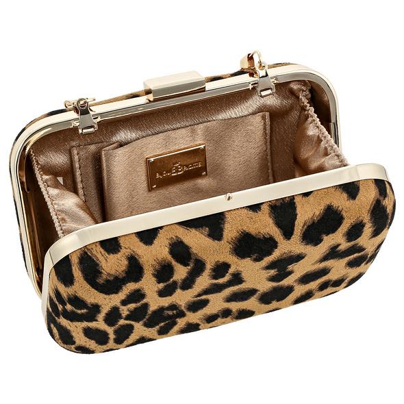 Clutch Box - Wild Lady