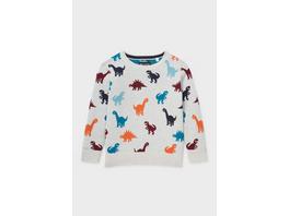 Dino - Feinstrick-Pullover
