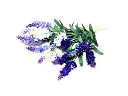 Lavendelstrauß